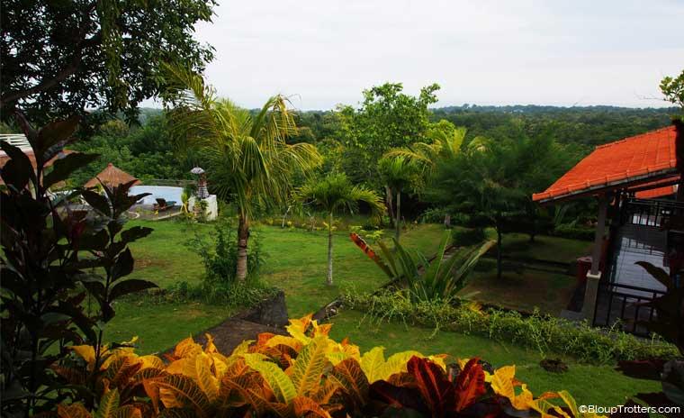 végétation, mer, piscine, Bali