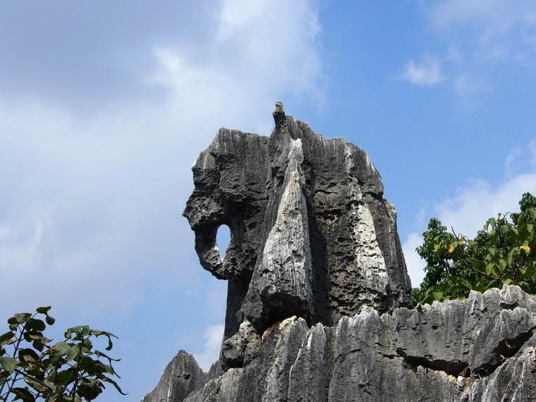 L'éléphant de Shilin !