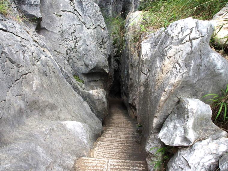 Les escaliers pour descendre au coeur de la forêt de pierre