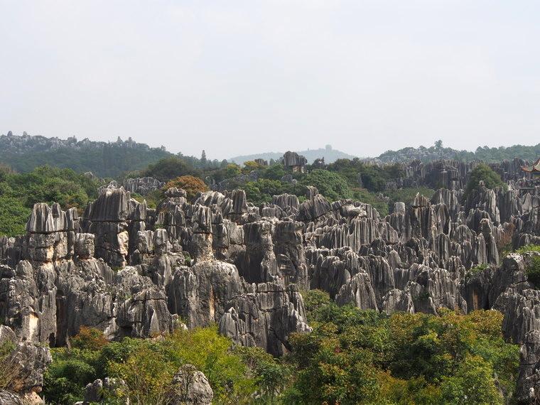 Vue de la grande forêt de pierre de Shilin