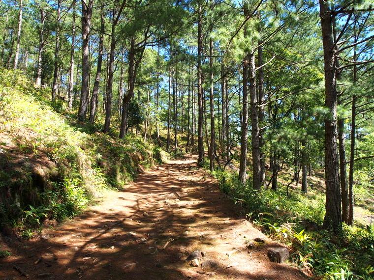 Le chemin qui mène au sommet de Lang Biang