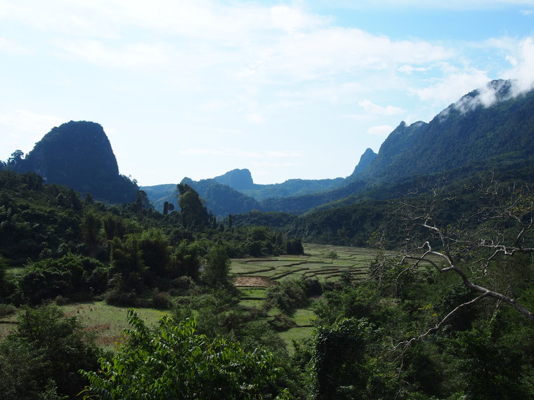 riziere nord laos