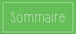 logo-nz-sommaire