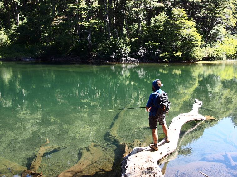 lago chico huerquehue chili