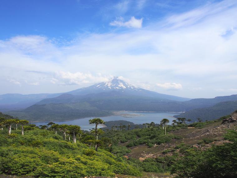 volcan-llaima-conguillo-chili
