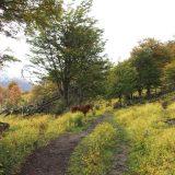 randonnee ushuaia valle andora